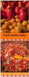 Salsa-tomatoes, onions, cherry peppers
