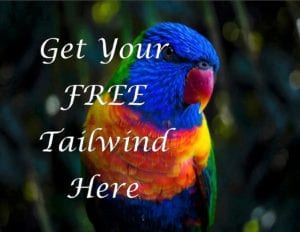 Get your free Tailwind Here
