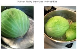 Boiling Head of Cabbage