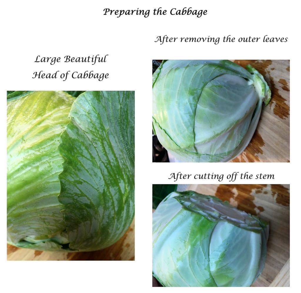 Preparing the cabbage