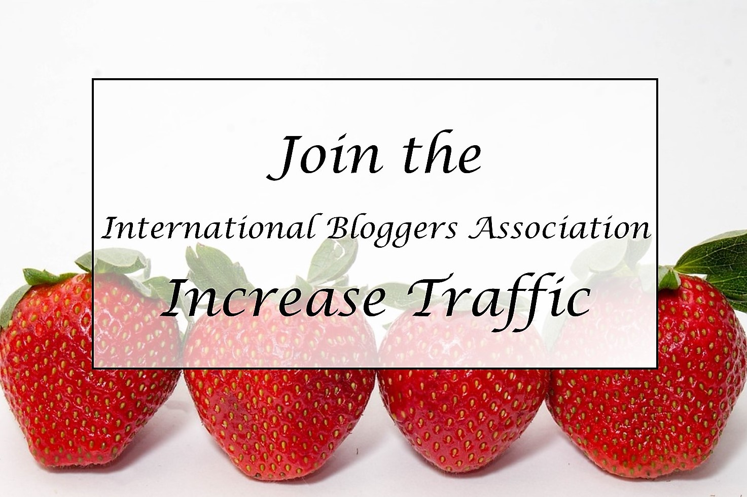 Join the International Bloggers Association