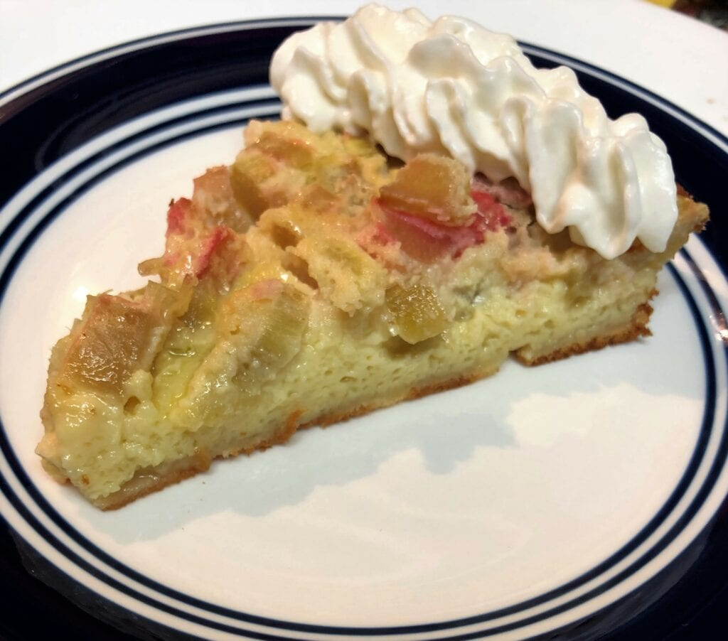 Slice of Rhubarb Custard Pie