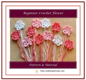 Beginner Crochet Flower 1