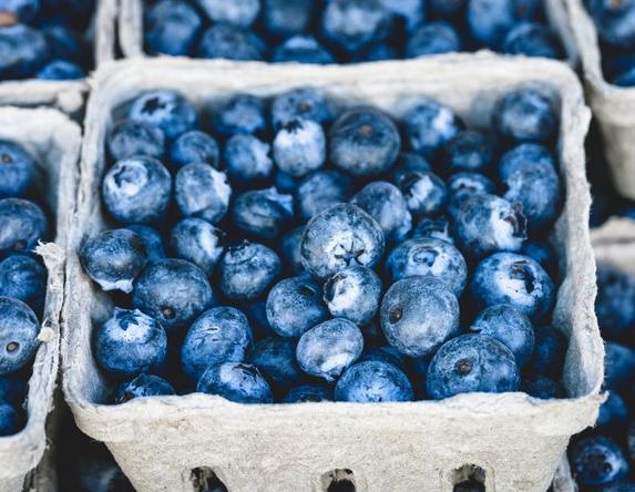 Fresh-Blueberries