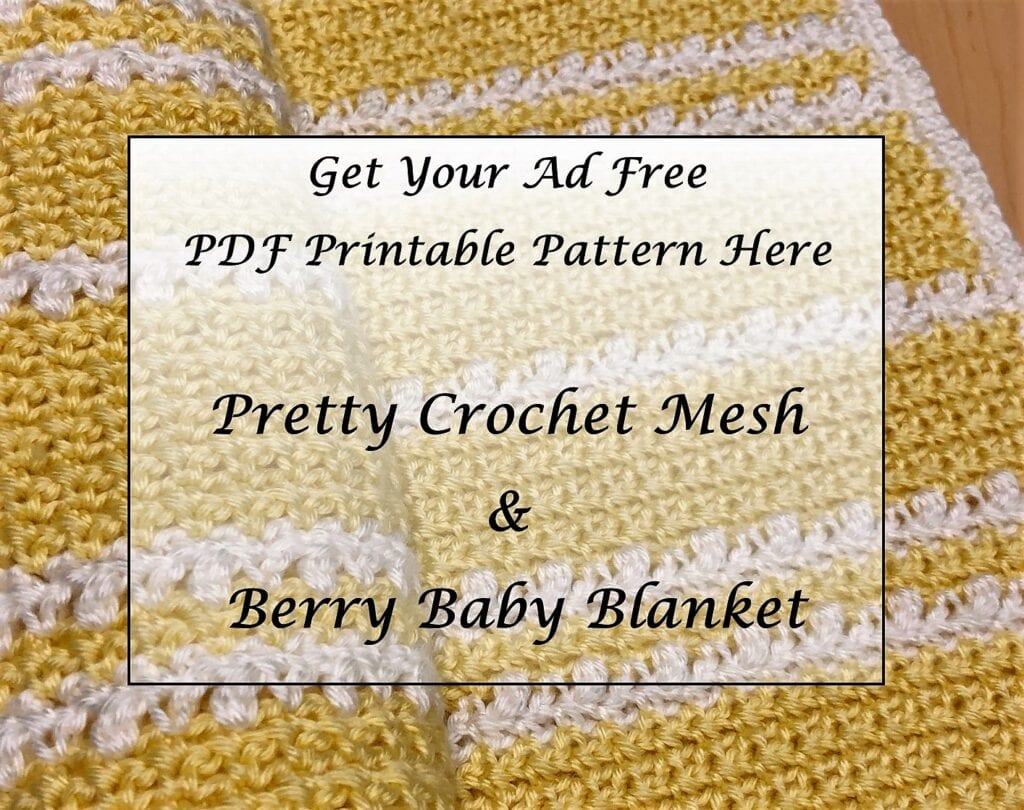 Pretty Crochet Mesh and Berry Baby Blanket Printable Pattern