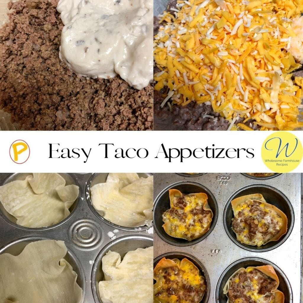 Easy Taco Appetizers